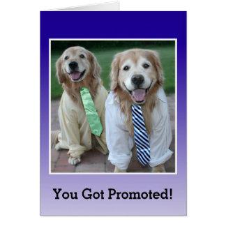 Golden Retriever Congratulations on Your Promotion Card