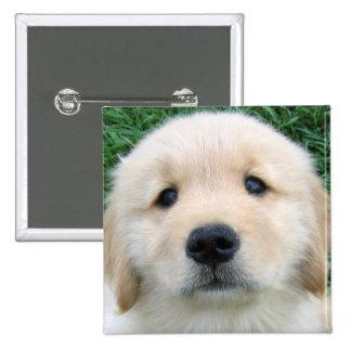 Golden Retriever Cute Puppy Buttons