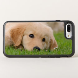 OtterBox Apple iPhone 7 Plus Symmetry Case with Golden Retriever Phone Cases design