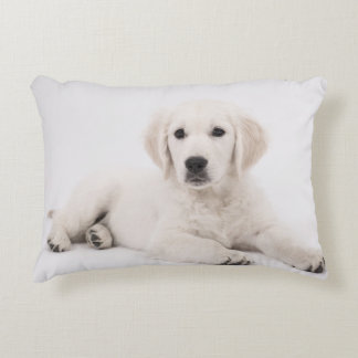 Golden Retriever Decorative Pillow