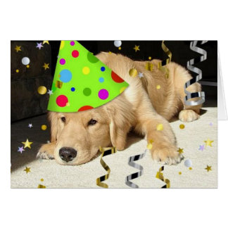 Golden retriever del juerguista del cumpleaños tarjeta de felicitación