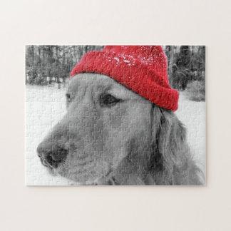 Golden retriever del perro del esquí puzzle con fotos