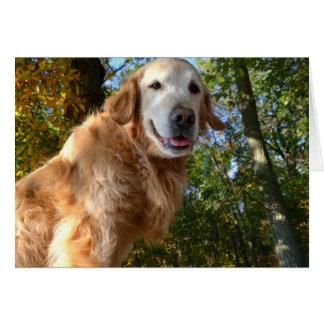 Golden retriever del perro/tarjeta de nota felices tarjeta pequeña