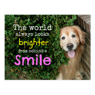 Golden retriever detrás de una sonrisa postales