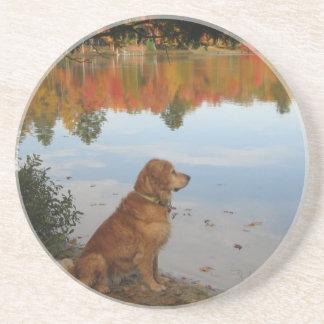 Golden Retriever Dog at Autumn Lake Drink Coaster