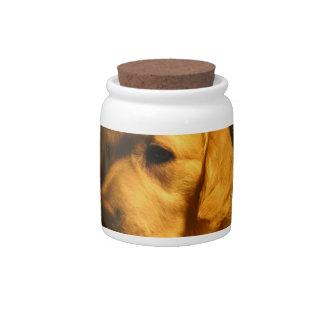 Golden Retriever Dog Candy Jar