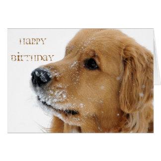 Golden Retriever Dog Card