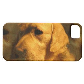 Golden Retriever Dog iPhone 5 Case