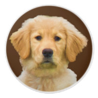 Golden Retriever Dog Ceramic Knob