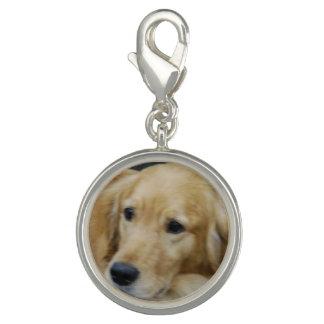 Golden Retriever Dog Charm