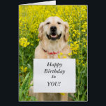 """Golden retriever dog cute custom birthday card<br><div class=""""desc"""">Cute golden retriever dog holding birthday message custom happy birthday greetings card.  Change or delete text to suit requirements</div>"""