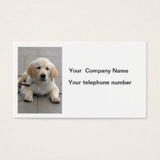 Golden Retriever dog cute photo business card