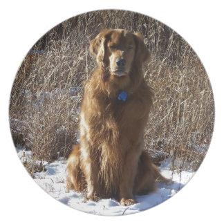 Golden Retriever Dog Dinner Plate
