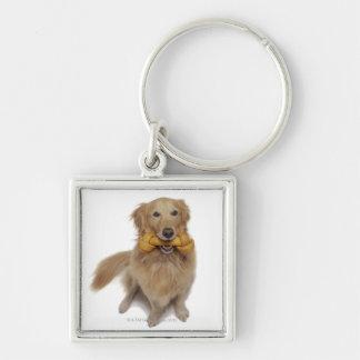 Golden Retriever Dog holding bone in mouth Keychain