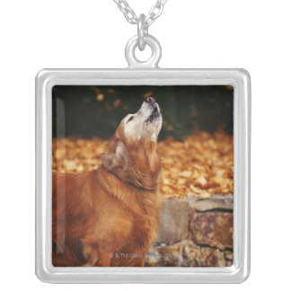 Golden retriever dog howling on path silver plated necklace