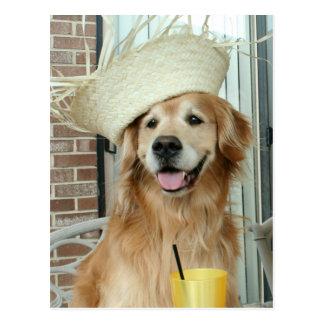 Golden Retriever Dog in Straw Hat Happy Summer Postcard