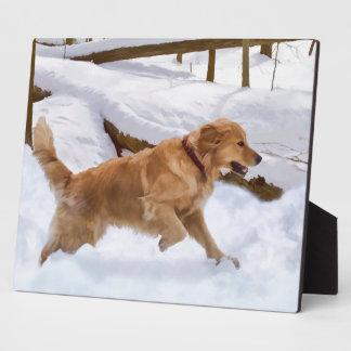 Golden Retriever Dog in the Snow Plaque