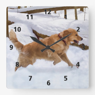 Golden Retriever Dog in the Snow Square Wall Clock