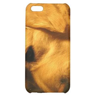 Golden Retriever Dog iPhone 4 Case