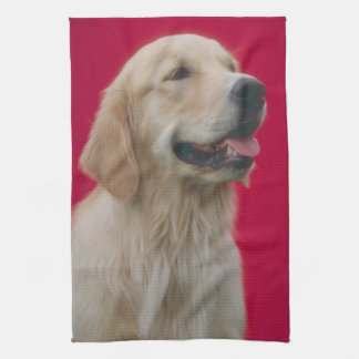 Golden Retriever Dog Kitchen Towel