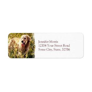 Golden Retriever Dog Custom Return Address Labels