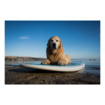 Golden Retriever Dog  Laying On A Paddle Board Poster