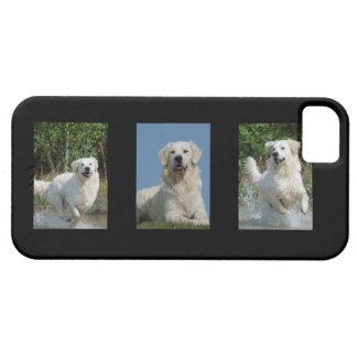 Golden Retriever dog lovers photo iphone 5 case