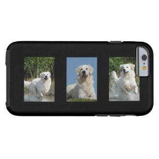 Golden Retriever dog lovers photo iphone 6 case