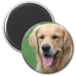 Golden Retriever dog magnet, gift present