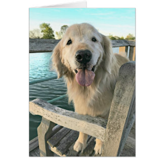 Golden Retriever Dog on a Dock Thinking of You Card