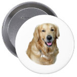 Golden Retriever dog photo Pinback Button