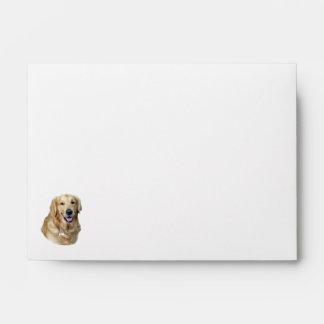 Golden Retriever dog photo portrait Envelope