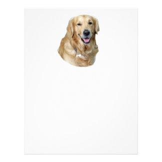 Golden Retriever dog photo portrait Flyer