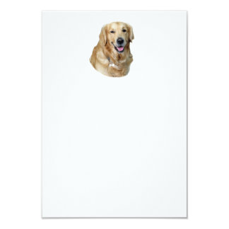 Golden Retriever dog photo portrait 3.5x5 Paper Invitation Card