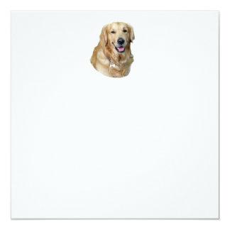 Golden Retriever dog photo portrait 5.25x5.25 Square Paper Invitation Card