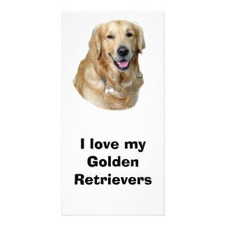 Golden Retriever dog photo portrait Photo Cards
