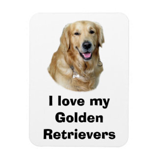 Golden Retriever dog photo portrait Rectangular Photo Magnet