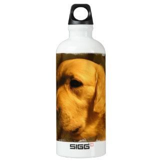 Golden Retriever Dog SIGG Traveler 0.6L Water Bottle