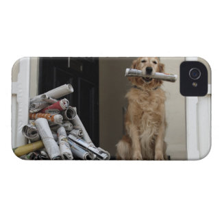 Golden retriever dog sitting at front door iPhone 4 Case-Mate case