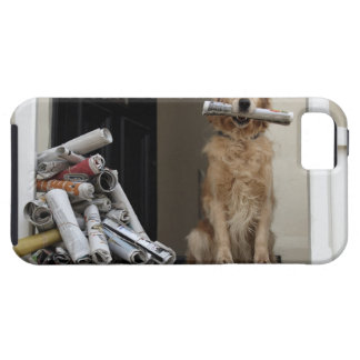 Golden retriever dog sitting at front door iPhone 5 covers