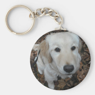 Golden Retriever Dog - The Colours Of Fall Key Chains
