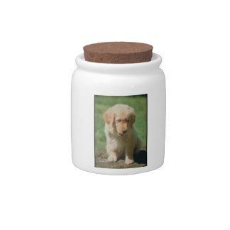 Golden Retriever Dog Treat Candy Jar