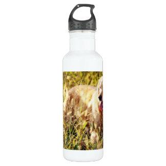 Golden Retriever Dog Water Bottle