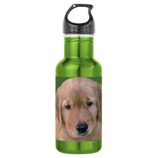 Golden Retriever Dog Water Bottle 18oz Water Bottle