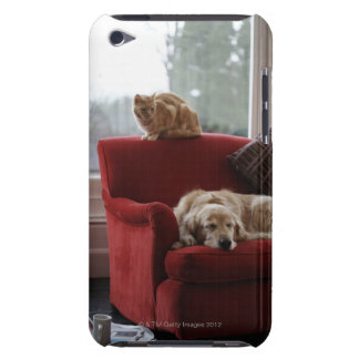 Golden retriever dog with ginger tabby cat iPod touch cases