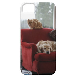 Golden retriever dog with ginger tabby cat iPhone SE/5/5s case