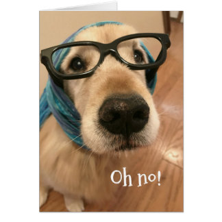 Golden Retriever Dog With Glasses Belated Birthday Card