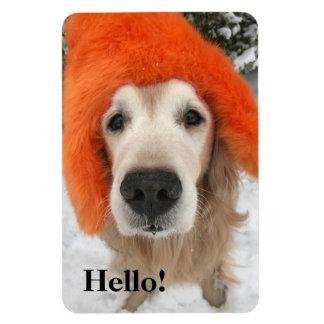 Golden Retriever Dog With Orange Fuzzy Hat in Snow Magnet