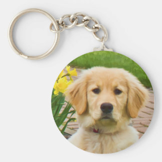 Golden Retriever Dog,  Yellow Daffodils Keychain