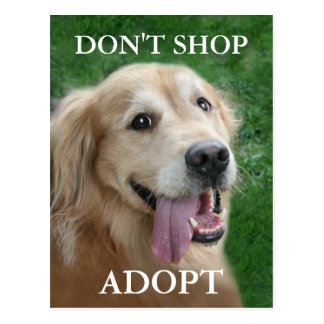 Golden Retriever Don't Shop Adopt Rescue Postcard